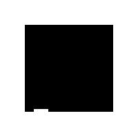 FLO jewels logo